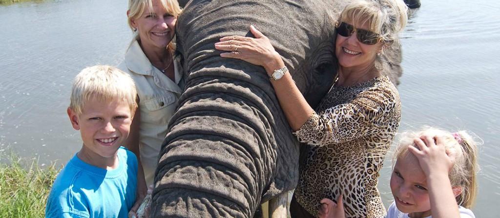 Model of Elephant Care