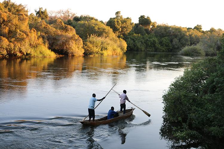 Zambezi Cruising