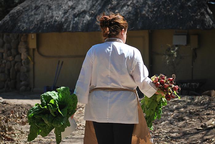 Anna at Londolozi