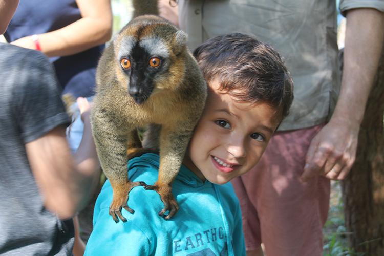 Madagascar 12