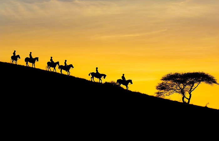 Horseback Riding on the African Plains