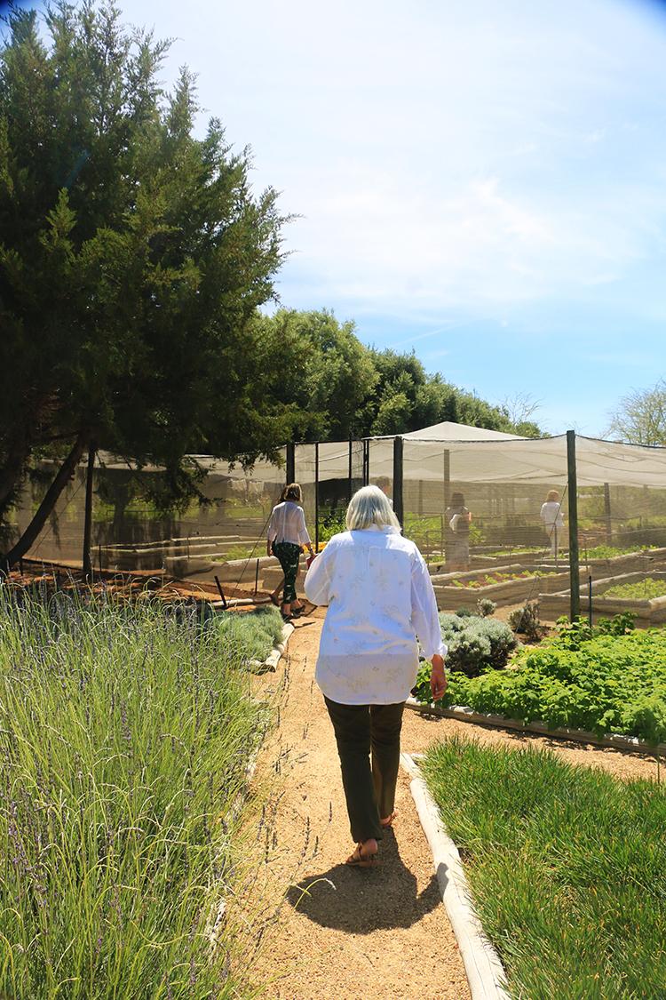 garden-walks