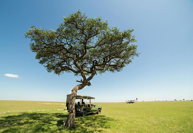 masai-mara-landscape
