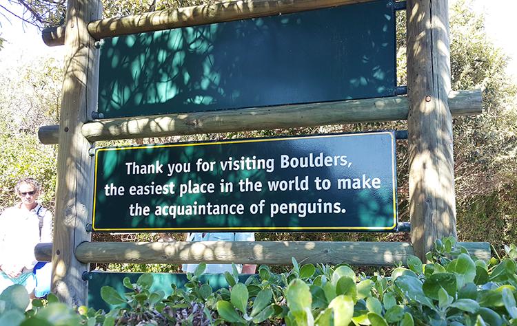 Boulders Beach 4