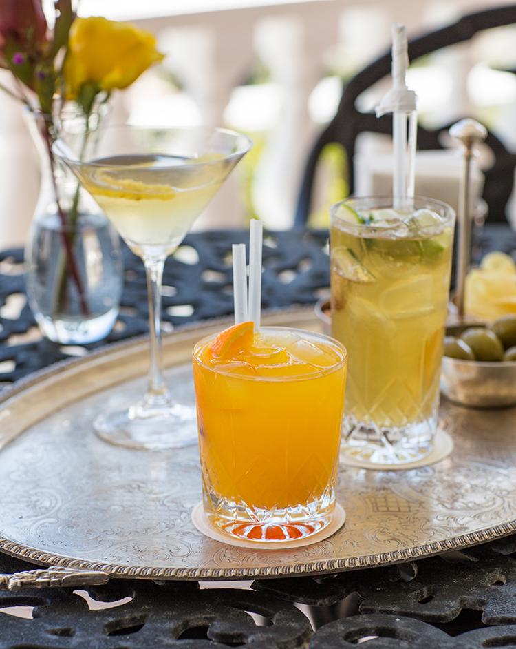 Cocktails SL