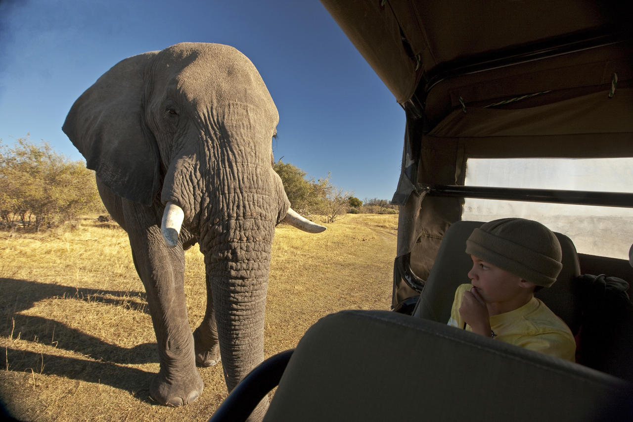 zarafacamp-safari-experience-greatplainsconservation-11